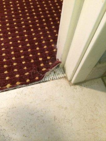 Harrah's Laughlin: torn carpet