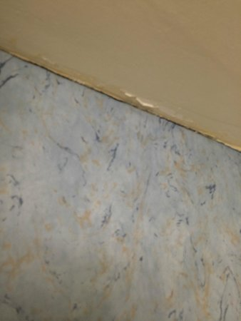 Harrah's Laughlin : peeling wallpaper