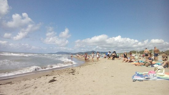 The 10 Best Things to Do in Marina di Grosseto - 2018 (with Photos ...