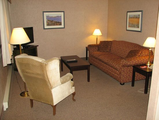 "Econo Lodge Inn & Suites: Queen suite ""living room"" area"