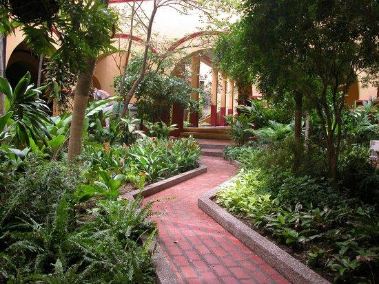 El Claustro Hotel House : The Pathway