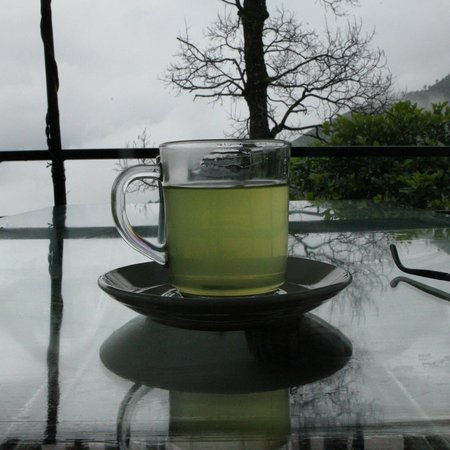 Siddhartha Garden Ayurveda : Fresh lemongrass tea from the garden