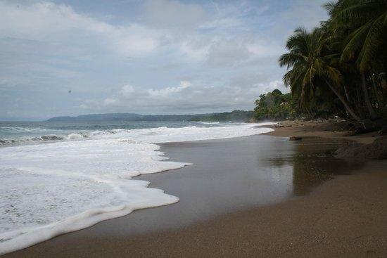 Tango Mar Beachfront Boutique Hotel & Villas: Gorgeous beach