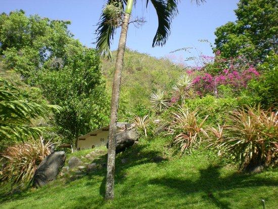 """EcoLodge """"La Bonita"""": garden"""