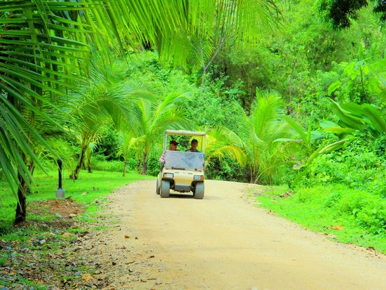 Red Frog Beach Island Resort & Spa: Move about by Jungle Cart