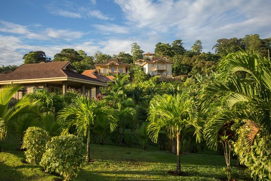 Red Frog Beach Island Resort & Spa: Tropical hillside overlooking beach