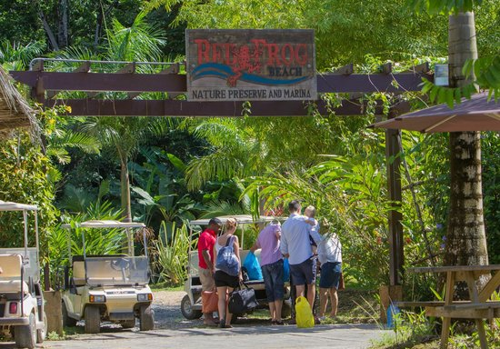 Red Frog Beach Island Resort & Spa: Island adventure