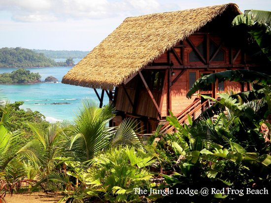 Red Frog Beach Island Resort & Spa : Undiscovered