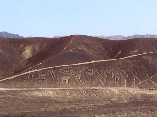 Lineas de Nazca: A family group