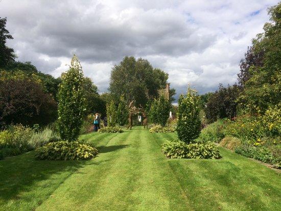 Stillingfleet Lodge Gardens: The Avenue