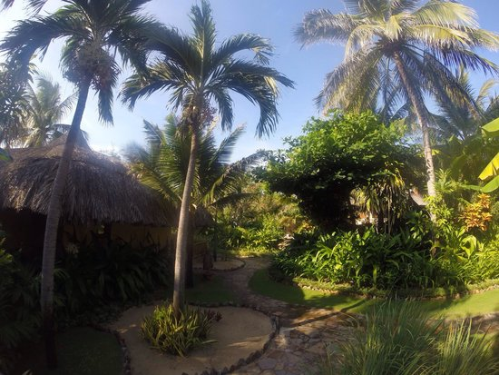 Mia Resort Mui Ne: Вид из бунгало
