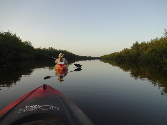 Tour the Glades - Private Wildlife Tours: Jenny