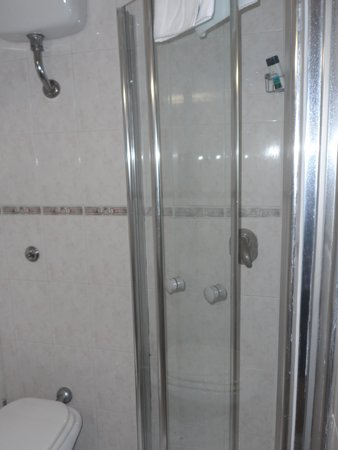 Gambrinus Hotel: Bathroom with shower