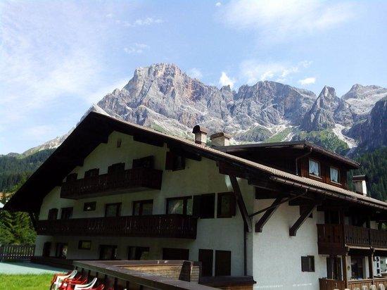 Hotel Orsingher: Vista posteriore della struttura.
