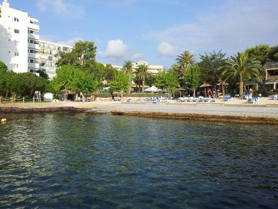 Hotel Son Caliu Spa Oasis: stranden