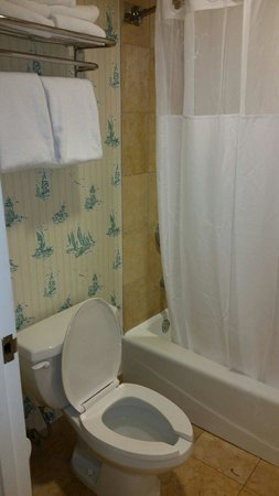 Disney's Beach Club Resort: Toilet and bathtub