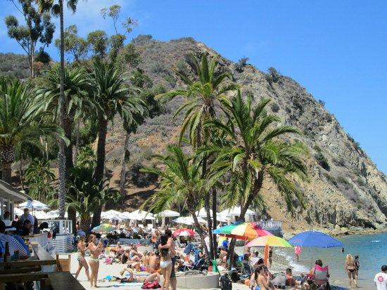 Walking to Descanso Beach Club August 2014