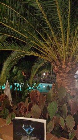 Hotel Riu Arecas: Riu Arecas