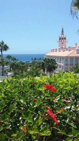 Hotel Riu Arecas: Riu Palace