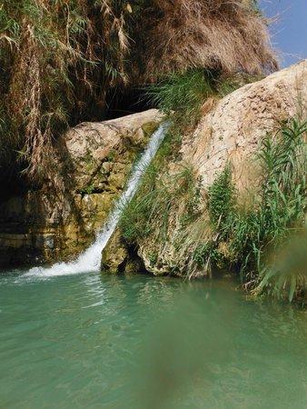 Ein Gedi Nature Reserve: Waterfall