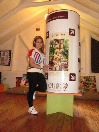 ChocoMuseo: Chocolates deliciosos!!!