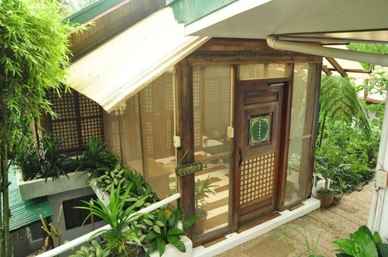 Sonya's Secret Garden: Our cottage
