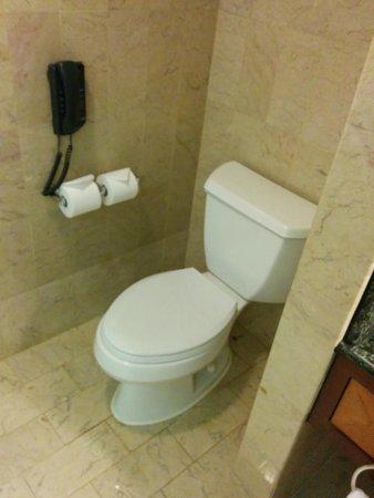JW Marriott Hotel Hong Kong: Toilet Seat - just clean