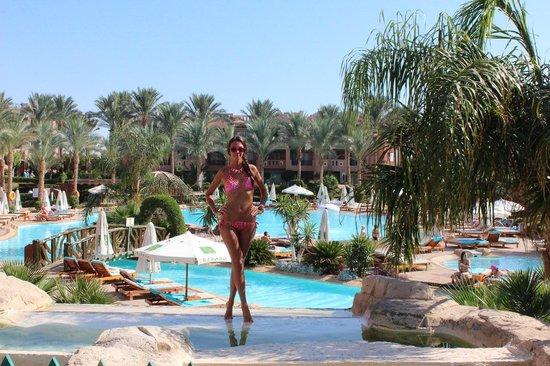 Rehana Sharm Resort: la piscina