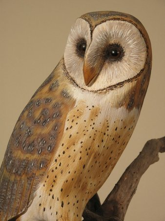 Wendell Gilley Museum: Life-size Barn Owl carving by Wendell Gilley