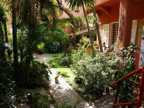 Chez Aina: Garten