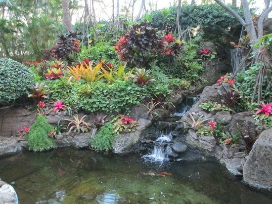 Hilton Waikiki Beach: tropical garden on hotel grounds