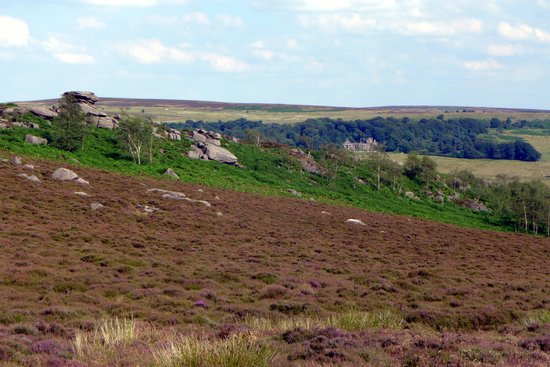 Longshaw Estate: Longshaw Lodge seen from the hills opposite - with Mother Cap stone outcrop in the foreground.