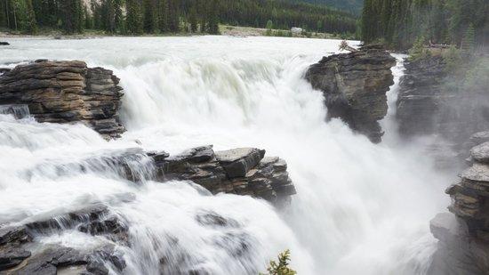 Athabasca Falls: Falls