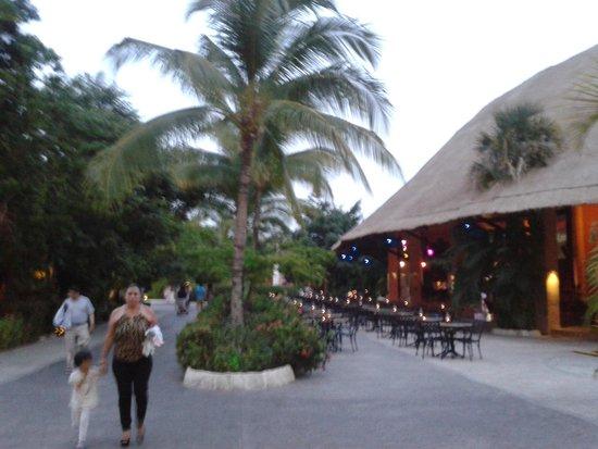 Sandos Caracol Eco Resort : Ruta hacia el area de restaurantes