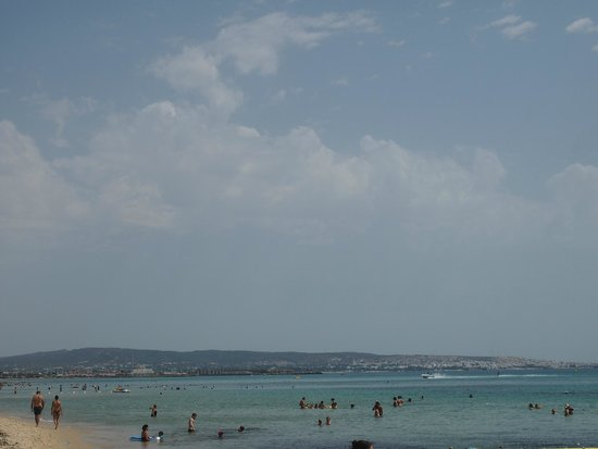 Daphne Bahia Beach: .