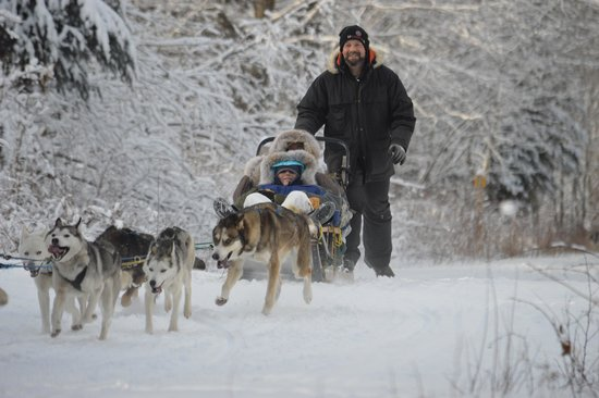 Muddy Paw Sled Dog Kennel - Day Tours