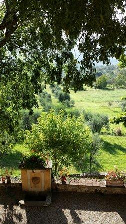 Villa Il Trebbiolo Relais & Restaurant : La vista dalla camera Bianca