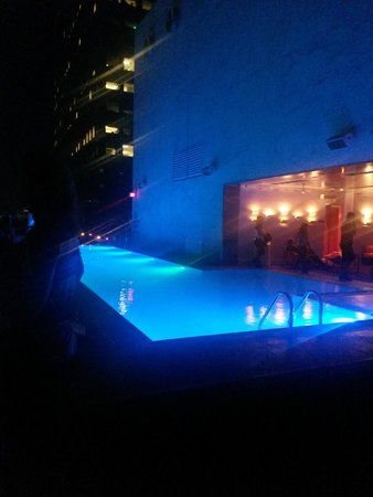 The Standard Downtown: Piscina e lounge bar sul tetto!