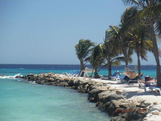 Renaissance Aruba Resort & Casino: Ahh- Tradewinds