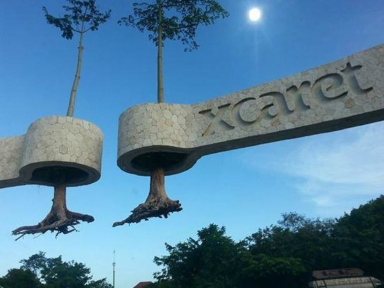 Occidental Grand Xcaret All Inclusive Resort: entry way to the resort