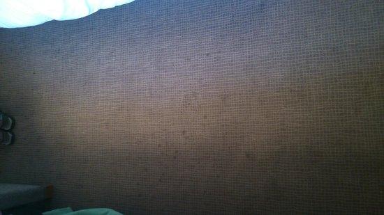 Novotel Montpellier: moquette sale dans la chambre