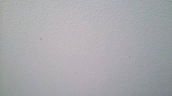 Novotel Montpellier: taches au plafond