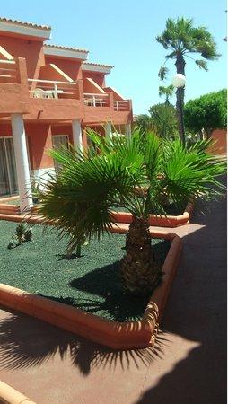 Globales Costa Tropical: Apartamentos
