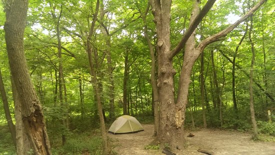 The Back Half Of Our Campsite Picture Of Starved Rock