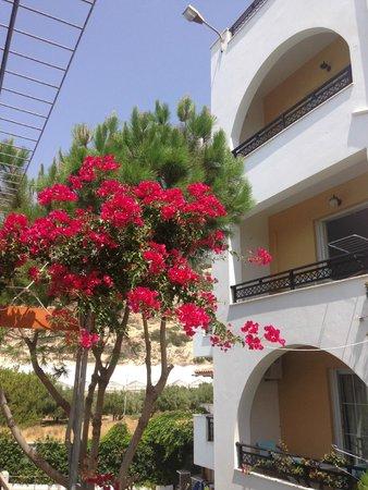 Sarikampos Beach Hotel : hotel