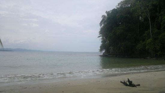Puerto Viejo Beach: playa PUNTA UVA