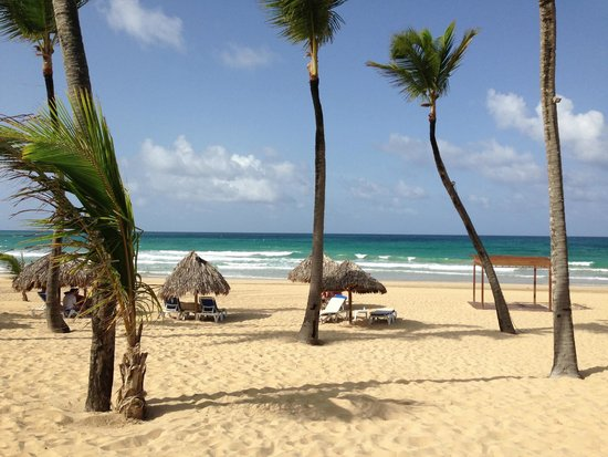 Excellence Punta Cana: 1st look at the beach-just on the other side of the pool 20 yards max