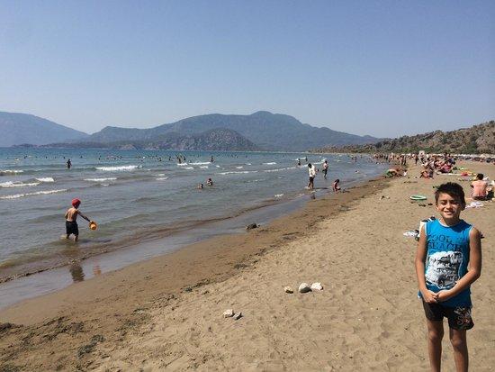Iztuzu Beach: Geniş plaj