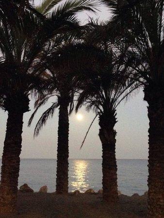 Playa El Bajondillo: Beach