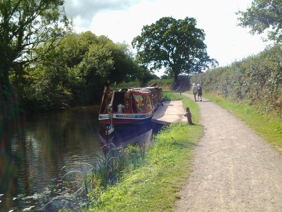 Tiverton Canal Co : horse drawn barge